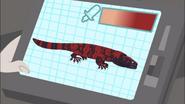 Red Gila Monster