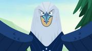 Bald Eagle Power