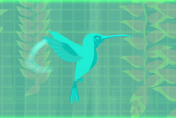 Hummingbird Wild Kratts.9