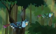 Hummingbird.wildkratts.0001