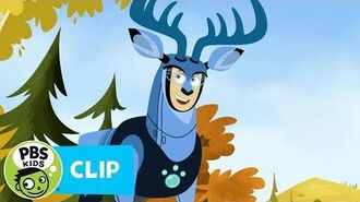 WILD KRATTS Deer Power! PBS KIDS