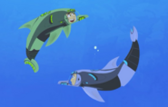Dolphin.wildkratts.0012