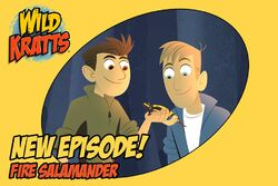 New Episode - Fire Salamander