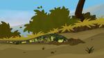 Croc.00096
