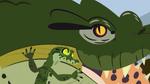 Croc.00388