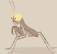 Desert Pebble Praying Mantis