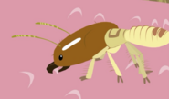 Termites vs Tongues-44