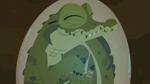 Croc.00200