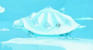 Tortuga.snow01