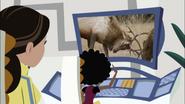 Elk Fighting on Screen