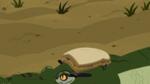 Croc.00168