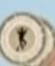 Sifaka Lemur Disc