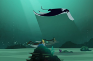 Sharks-Wild Kratts-07