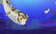 Blowfish.022