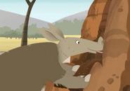 Termites vs Tongues-135