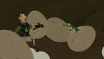 Croc.00254