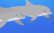 Wild Kratts-dolphin.001