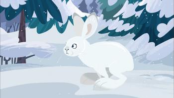 Animation (Winter)