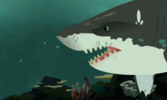 Sharks-Wild Kratts-26