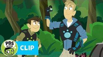 WILD KRATTS Rainforest Adventure PBS KIDS