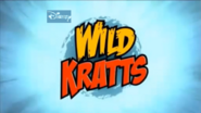 Disney wild kratts