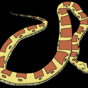 Reticulated Python Wildlife Animal Pedia Wiki Fandom