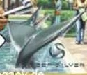 File:BasilosaurusWC.jpg