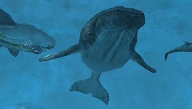Marineworldanimalswikipic