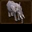 A Elephant Shot