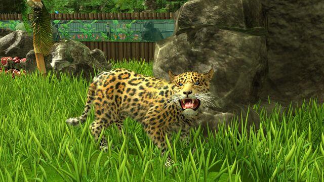 File:Wildlifepark3 jaguar.jpg