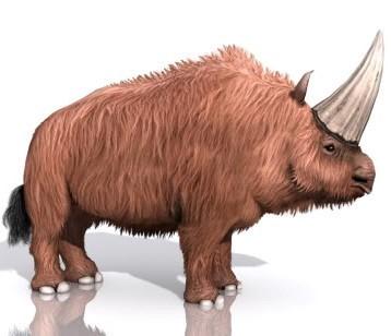 File:Elasmotherium.jpg