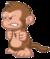 Monkeycute