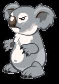 Koalaoptimised