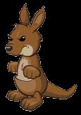 Kangaroooptimised
