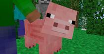 Porkey Image