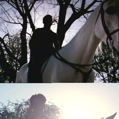 Leo's silhouette during the season 4 finale and the season 5 premiere