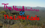 The New Adventures Of The Little Koala logo
