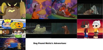 Dog Pound Mutts Adventures