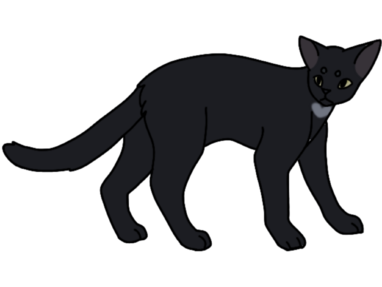 Wolfpaw. Ref