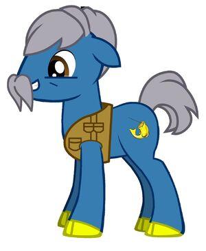 Pony ned