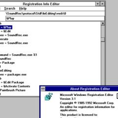 Windows 3.1 Registry Editor.