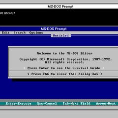 Windows 3.1 running a MS-DOS windowed program.