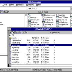 Windows 3.1 File Manager.