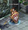 NPCs Holy Guard