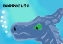 Barracudafinal