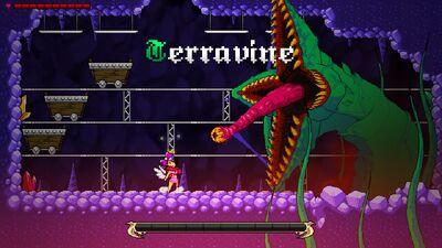 Terravine 2014