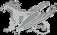 Beluga (Male)