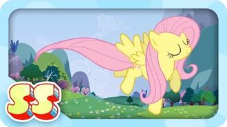 Fluttershy Takes Flight