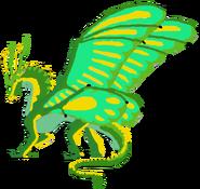 Morpho (Male)