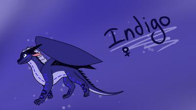 Indigonewref